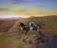 Western Skies Fine Art Print