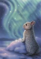 Aurora Bunny Fine Art Print