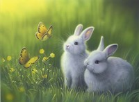 Buttercups Fine Art Print