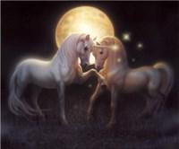 Moondance Fine Art Print