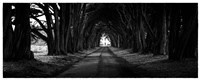 Light at the End of the Tunnel Fine Art Print