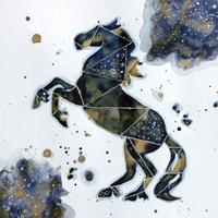 Galactic Horse Fine Art Print
