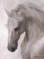 Free Spirit Fine Art Print