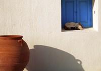 Nap Time in Mykonos Fine Art Print
