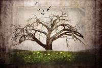Cottonwood Tree Part 3 Fine Art Print