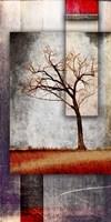 Cottonwood Tree Part 4 Framed Print