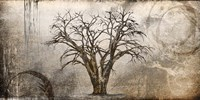 Cottonwood Tree Part 7 Fine Art Print