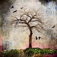 Cottonwood Tree Part 8 Fine Art Print