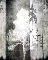 July Tree 2 Fine Art Print