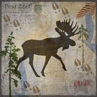 Moose Lodge Fine Art Print