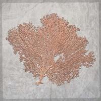 Decorative Sea Leaf 3 Fine Art Print