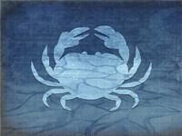 Gypsy Blue Cyanotype V4 Framed Print