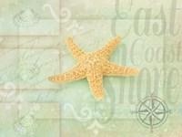 Gypsy Sea Green 4 Fine Art Print