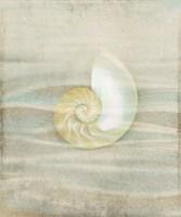 Gypsy Star 2 Fine Art Print