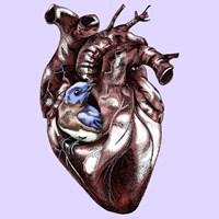 Birdie In My Heart Fine Art Print