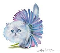 Kitten Ballerina Daisy Flower Stare Persian Cat Fine Art Print