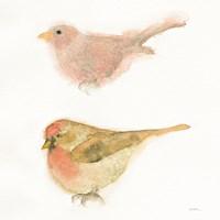 Watercolor Birds II Sq Fine Art Print