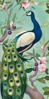 Pretty Peacock II Fine Art Print
