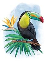Tropical Flair IV Framed Print