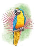Tropical Flair I Fine Art Print