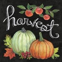 Autumn Harvest IV Square Fine Art Print