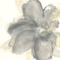 Floral Gray I Fine Art Print