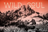 Ombre Adventure II Wild Soul Fine Art Print