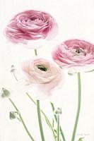 Light and Bright Floral VI Fine Art Print