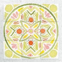 Citrus Tile III Fine Art Print