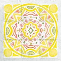 Citrus Tile II Fine Art Print