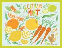 Fruity Smoothie IV Framed Print