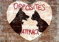 Opposites attract Fine Art Print