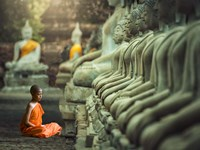 Young Buddhist Monk praying, Thailand Fine Art Print