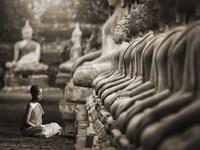 Young Buddhist Monk praying, Thailand (sepia) Fine Art Print