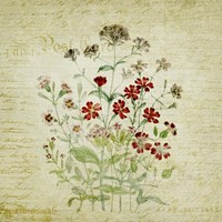 Flower Print Three Fine Art Print