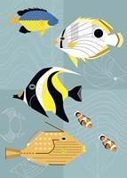 Tropical Fish Squares Fine Art Print