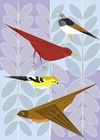 Songbird Squares Fine Art Print