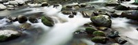 Rocks in Little Pigeon River, Great Smoky Mountains National Park, Tennessee Fine Art Print