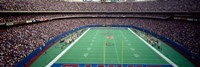 Giants Stadium, New Jersey Fine Art Print