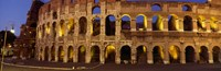 Ruins of an Amphitheater, Coliseum, Rome, Italy Fine Art Print