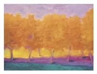 Yellow Trees Fine Art Print