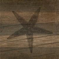 Rustic Starfish Fine Art Print
