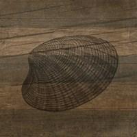 Rustic Shell Fine Art Print
