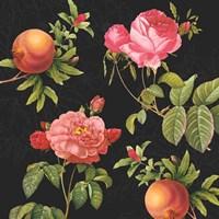 Pomegranates and Roses Fine Art Print