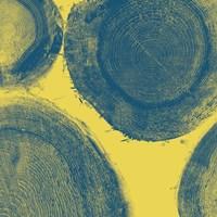 Blue on Yellow Fine Art Print