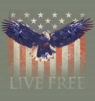 Live Free Fine Art Print