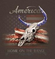 America Fine Art Print