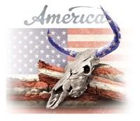 America on White Fine Art Print