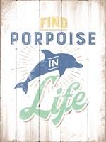 Porpoise Fine Art Print
