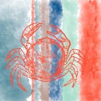 Crab Stripes Framed Print